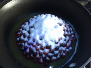 A gratuitous out-of-season photo of my cranberry sauce, looking like a lovely snow-capped mountain.