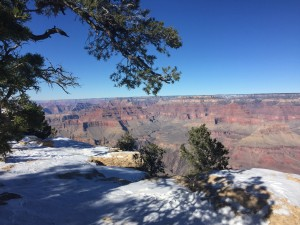 Too icy to hike at the Grand Canyon.