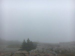 Sometimes, this is your view of beautiful Acadia National Park. Let it go.
