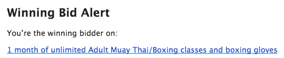 muay-thai-winner